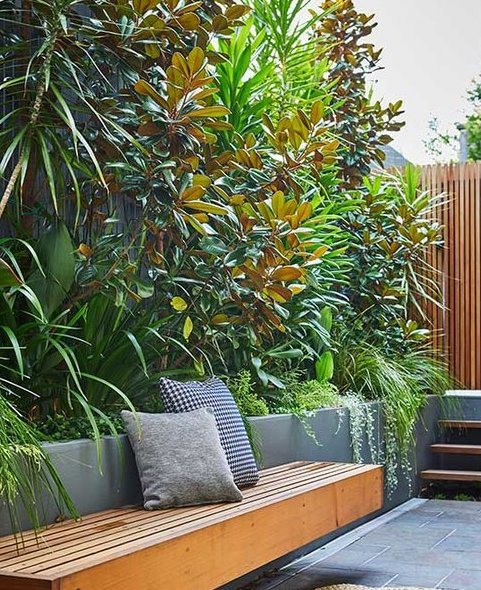 Tropical Gardens Without The Tropics Caragh Nurseries