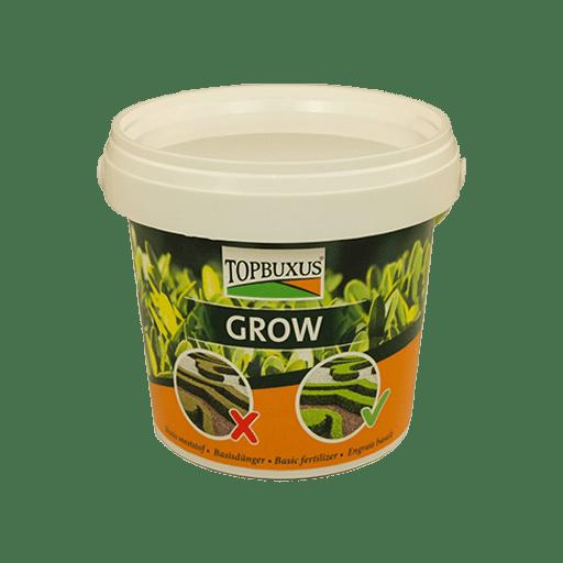 topbuxus-grow