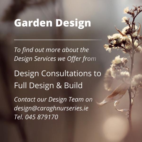 Caragh-Garden-Design_Square 1-1